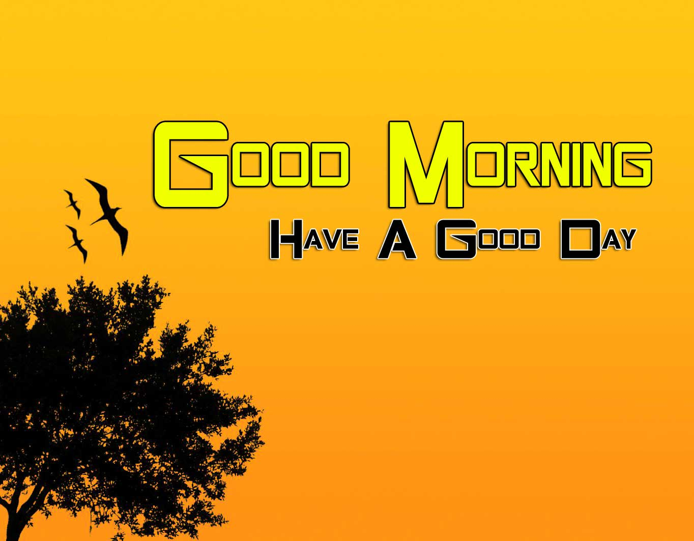 Beautiful Good Morning Download Wallpaper 2