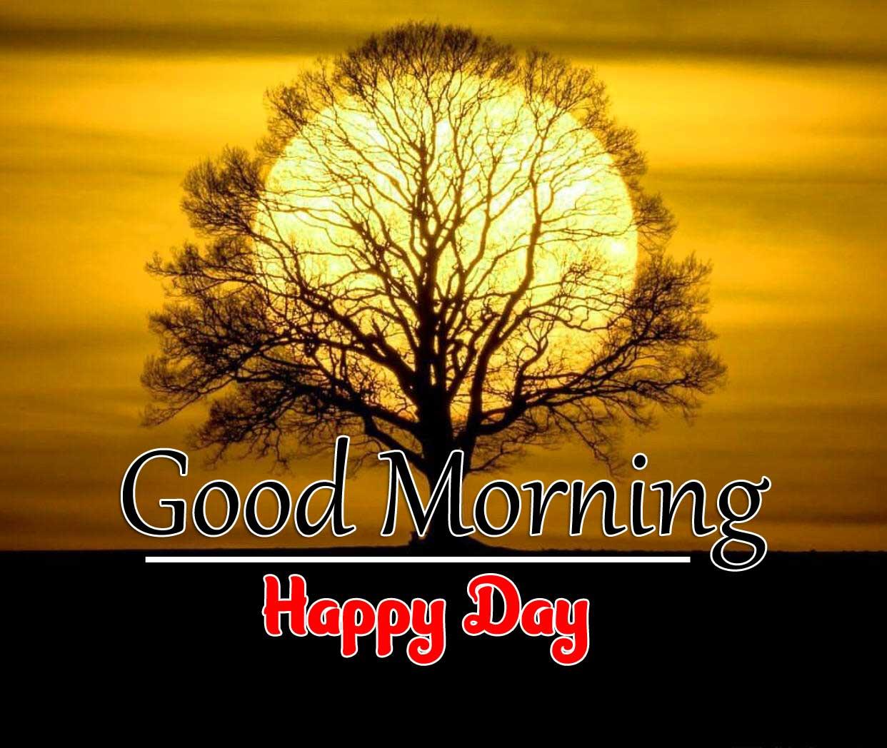 Beautiful Good Morning Free Images 1