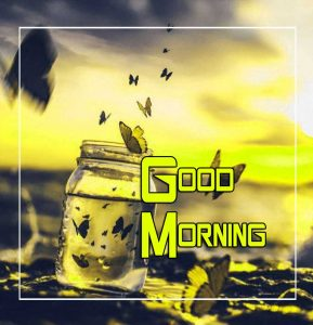 Beautiful Good Morning Free Images 3