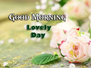 Beautiful Good Morning Images Download 4