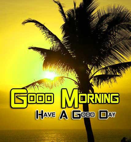 Beautiful Good Morning Images Hd 1