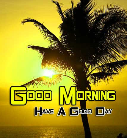 Beautiful Good Morning Images Hd 2
