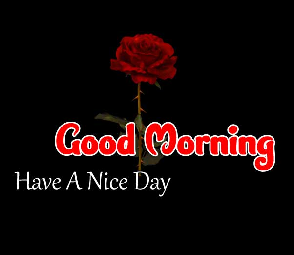 Beautiful Good Morning Images Pictures 1