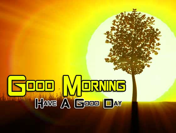 Beautiful Good Morning Images Wallpaper 2