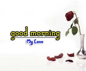 Beautiful Good Morning Images Wallpaper 4