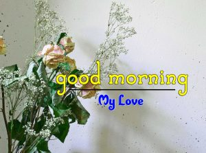 Beautiful Good Morning Pics Wallpaper 4