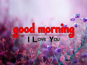 Beautiful Good Morning Pictures Download 4