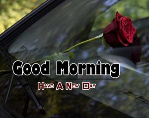 Beautiful Good Morning Pictures Images 7