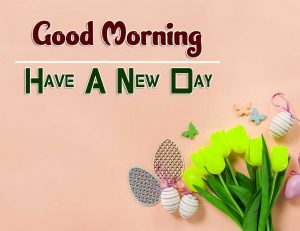 Beautiful Good Morning Wallpaper Download 5