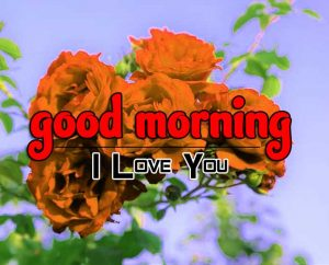 Beautiful Good Morning Wallpaper Images 4