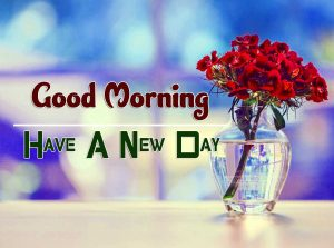 Beautiful Good Morning Wallpaper Images 8