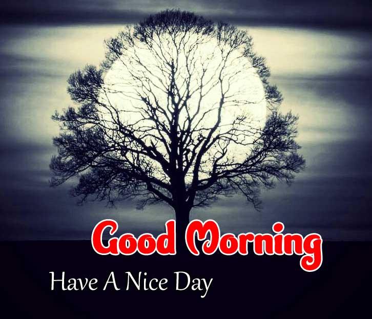 Beautiful Good Morning Wallpaper Pics 1
