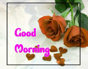 Beautiful Good Morning Wallpaper Pictures 4