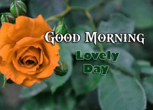 Best Good Morning Download Free