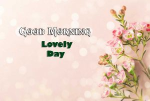 Best Good Morning Hd Free Wallpaper 1
