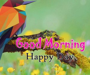 Best Good Morning Pics Download 3