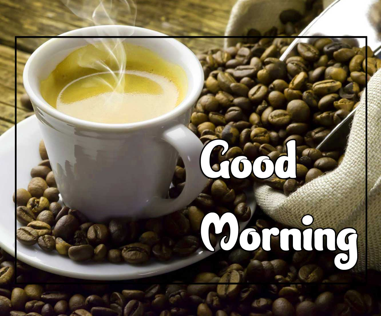 Best Good Morning Pictures HD Free 2