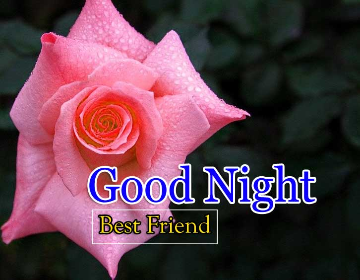 Best Good Night Download Photo