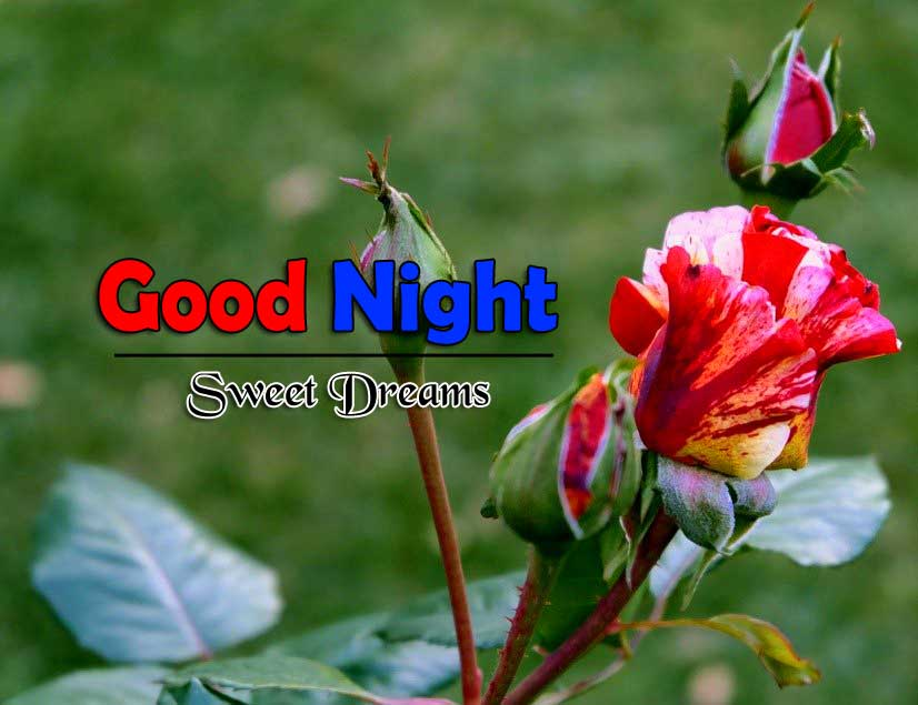 Best Good Night Hd Free Download Images
