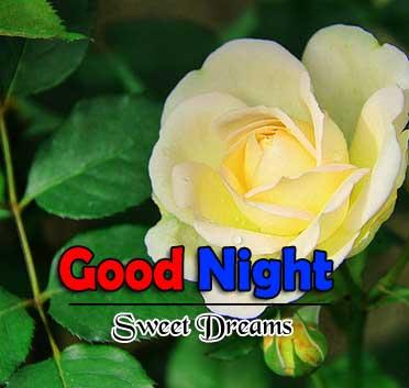 Best Good Night Hd Free Download
