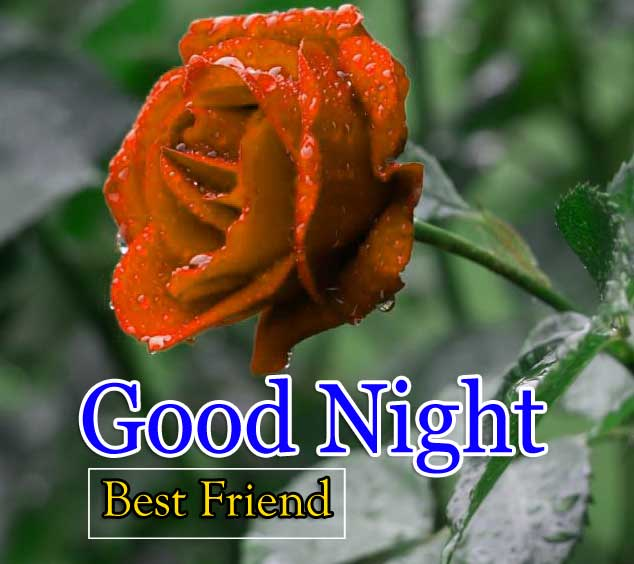 Best Good Night Photo Free