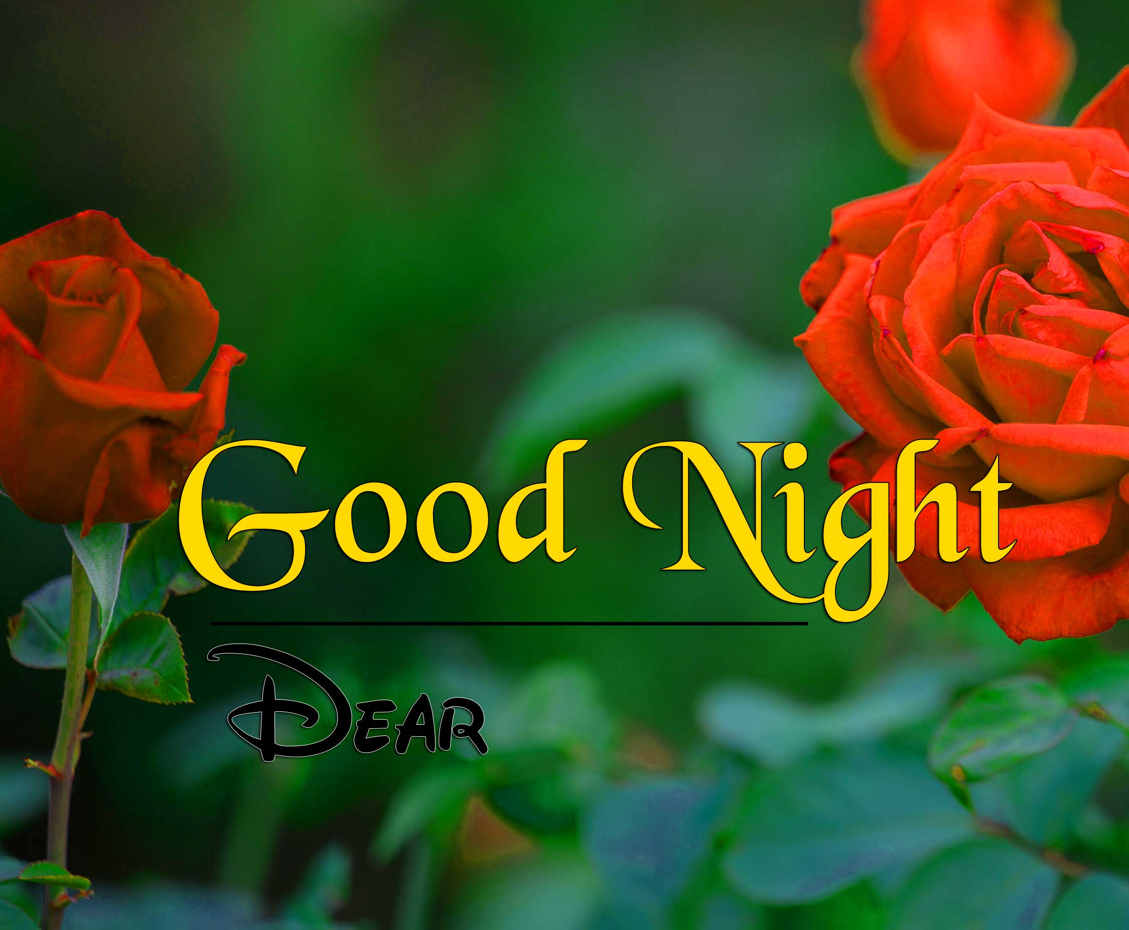 Best Good Night Pics Hd 1