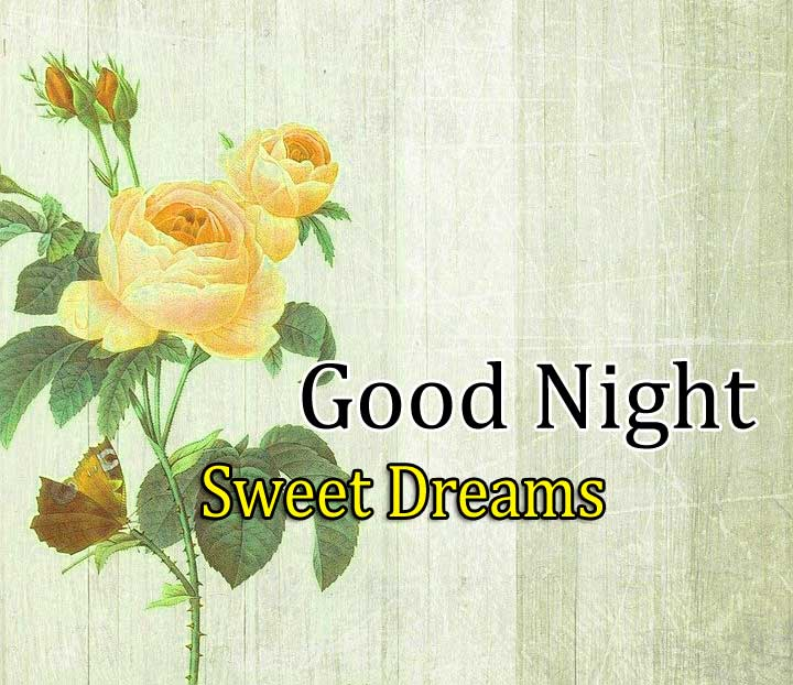 Best Good Night Pictures HD Free