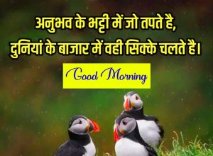 Best New Fresh Beautiful Quotes Good Morning Wishes Pics Download