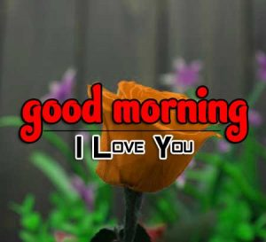 Cute Good Morning Images Download 1