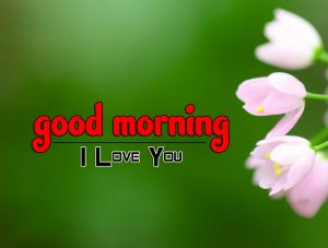Cute Good Morning Photo Images 1