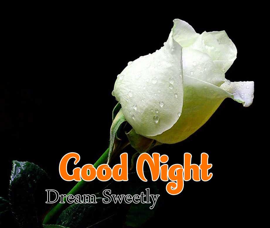 Cute Good Night Images Pics 1