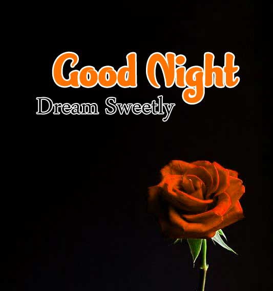 Cute Good Night Photo Hd Free