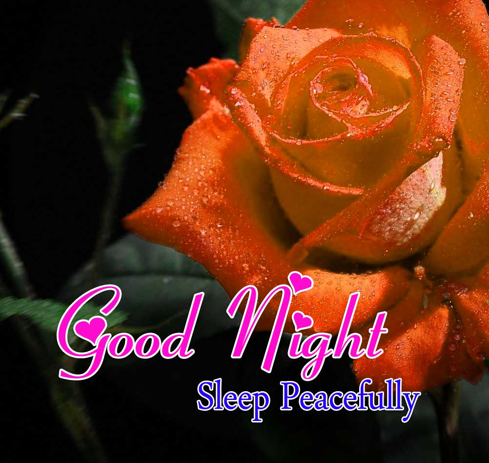 Cute Good Night Photo Images 1