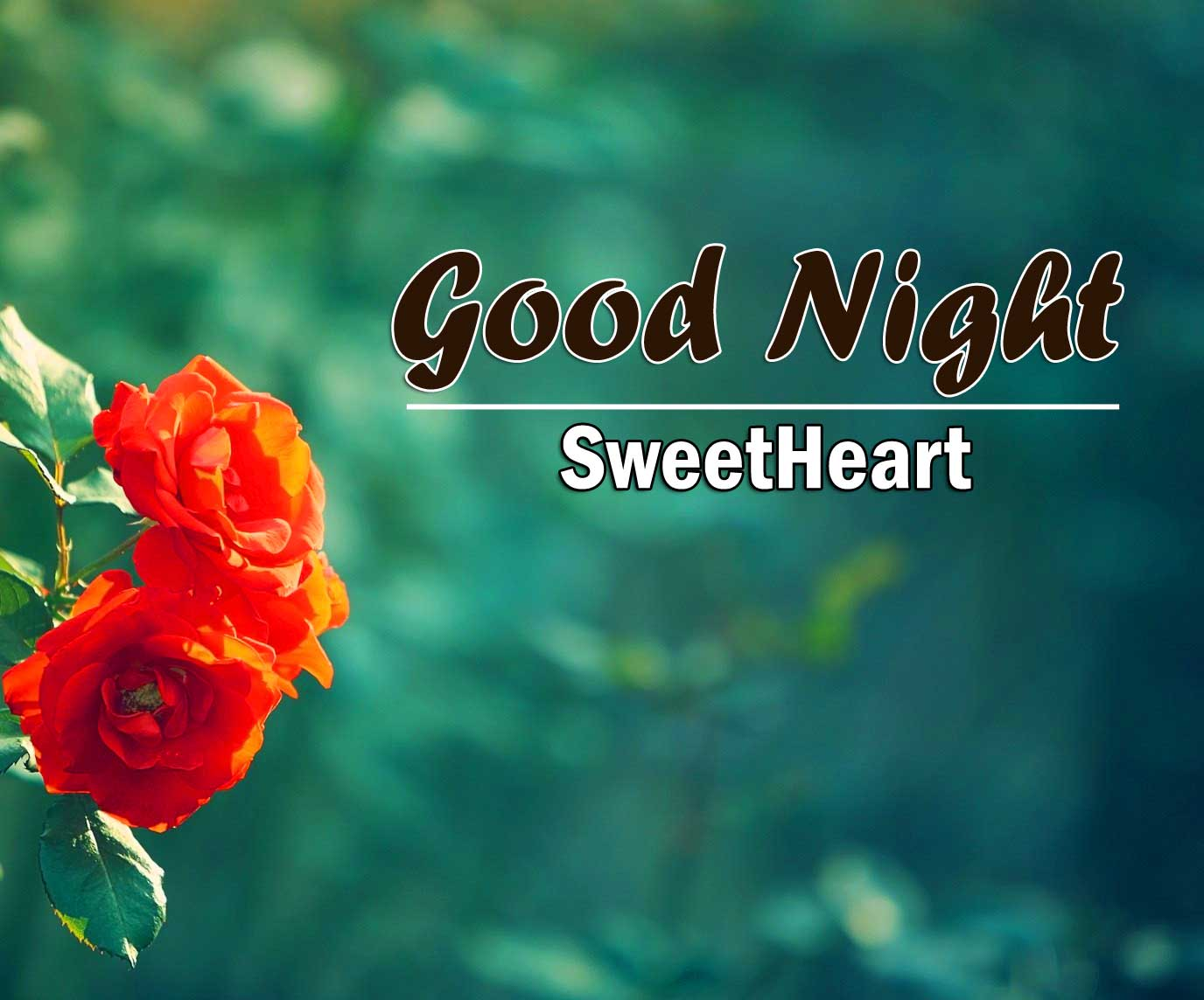 Cute Good Night Photo Wallpaper