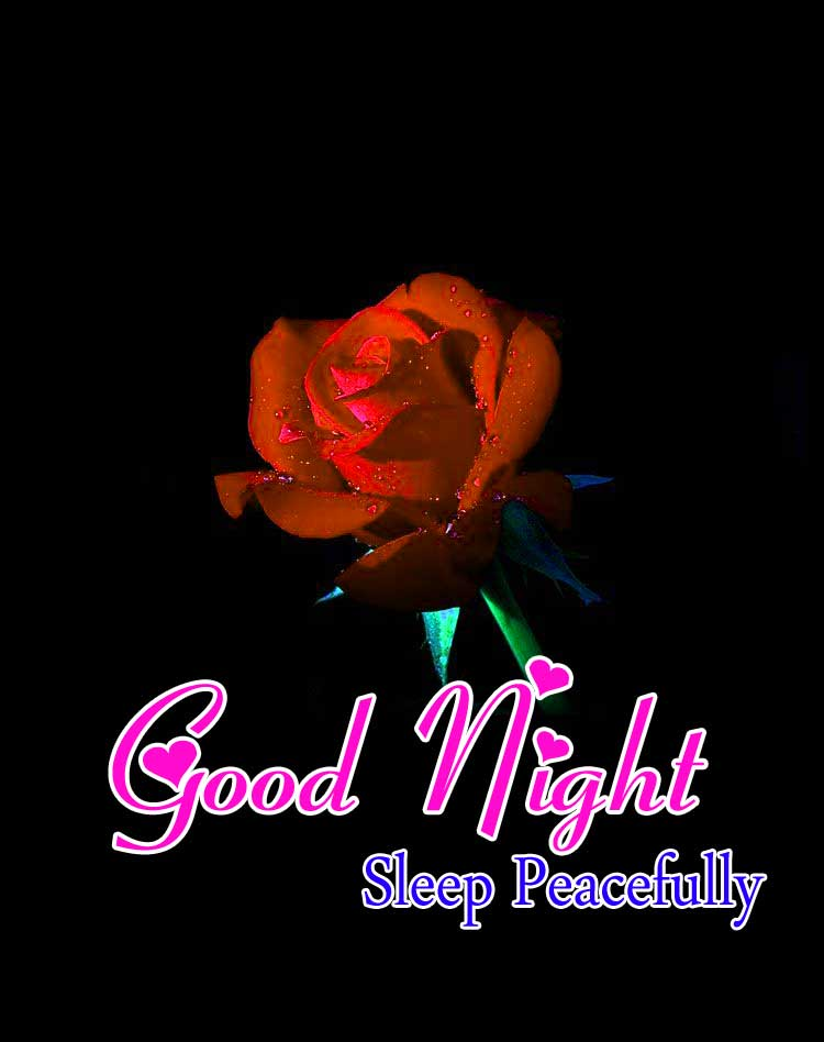 Cute Good Night Pictures HD FRee