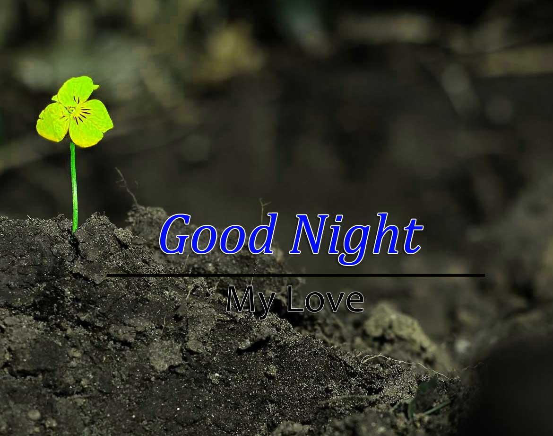Cute Good Night Wallpaper Images 1