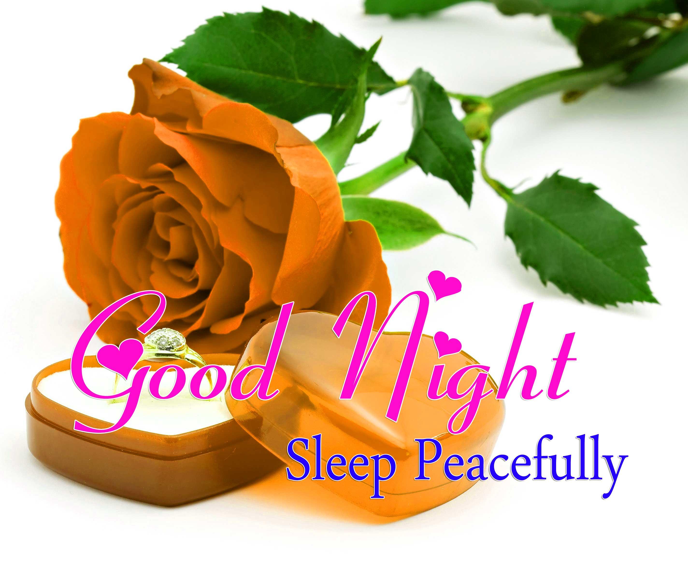 Cute Good Night Wallpaper Photo