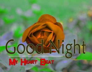 Free Beautiful 4k Good Night Images Pics Download 3