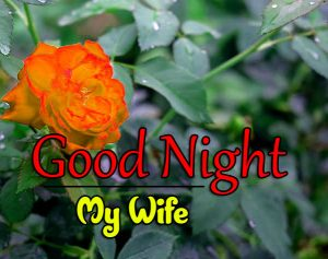Free Beautiful 4k Good Night Images Pics Download 4