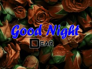 Free Beautiful 4k Good Night Images Pics Download 5