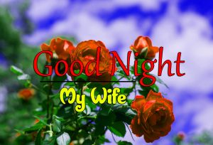 Free Beautiful 4k Good Night Images Wallpaper Download 5