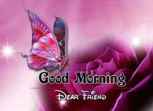 Free Good Morning Images Pics 1