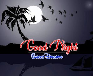 Free Good Night 4k Pics Pictures Download 2