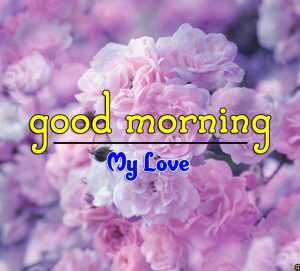 Good Morning Images Hd Free 2