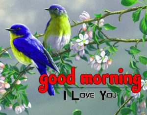 Good Morning Images Wallpaper 4
