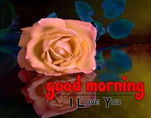 Good Morning Photo HD Free 1