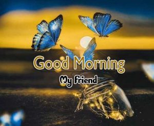 Good Morning Photo HD Free