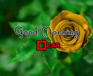 Good Morning Pics Download 1