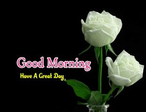 Good Morning Pics Pictures