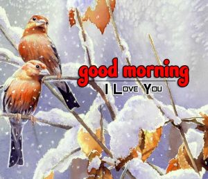 Hd Good Morning Images 1